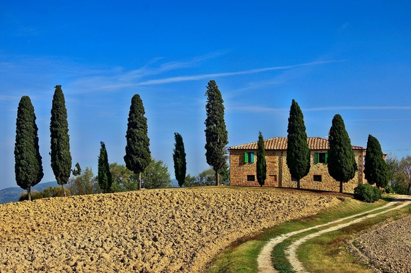 Explore Tuscany like Local